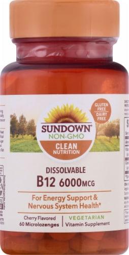 Sundown Naturals Dissolvable B12 6000 mcg Cherry Flavored Microlozenges Perspective: front