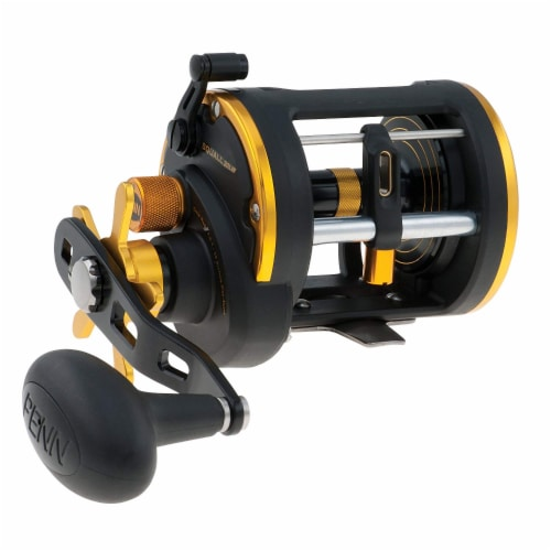 Penn SQL20LW Squall Levelwind Saltwater Fish Trolling Fishing Reel, Black & Gold Perspective: front