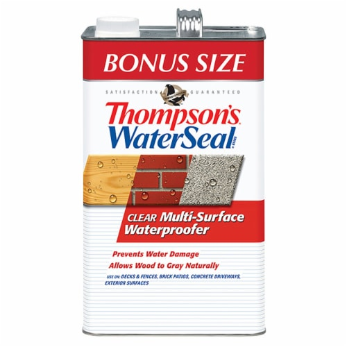 Thompson's® WaterSeal® Clear Water-Based Multi-Surface Waterproofer Perspective: front