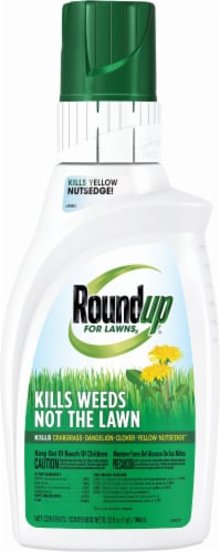 Roundup® For Lawns2 Concentrate Weed Killer Perspective: front