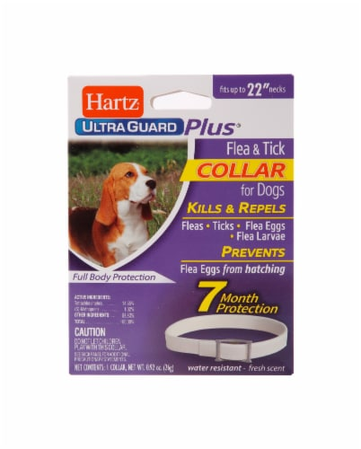 Hartz Ultra Guard Plus Flea and Tick Collar for Dogs Perspective: front