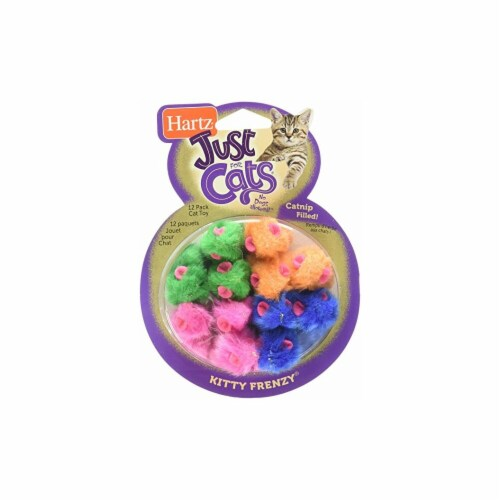 Hartz Mountain 98059 Hartz Kitty Frenzy Cat Toy, Pounce & Play Perspective: front