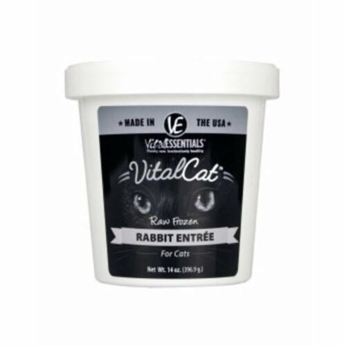 Vital Essential 93200952 14 oz Tub Frozen Cat Food Rabbit Perspective: front