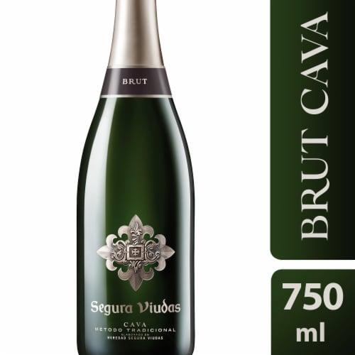 Segura Viudas Brut Reserva Sparkling Wine Perspective: front