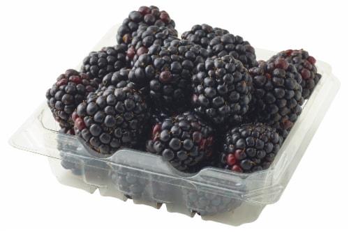 Berries - Blackberries Perspective: front