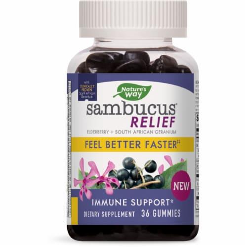 Nature's Way Sambucus® Relief Immune Support Gummies Perspective: front