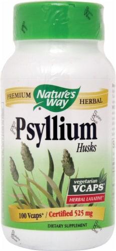 Nature's Way  Psyllium Husk Perspective: front