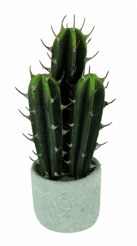 Artificial Cactus in Round Cement Planter 13 inch Perspective: front