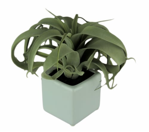 Artificial Air Plant in Decorative Cement Planter 10 inch Perspective: front
