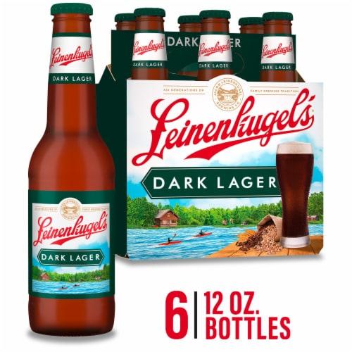Leinenkugel's Creamy Dark Lager Beer Perspective: front
