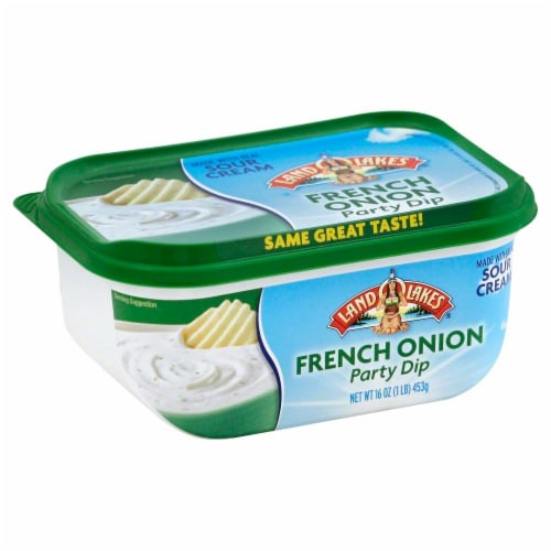 Land O' Lakes French Onion Sour Cream Party Dip Perspective: front
