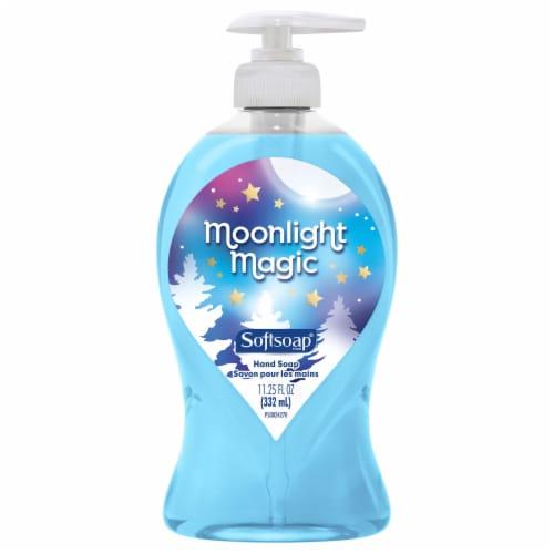 Softsoap Spring Blossom Liquid Handwash Perspective: front