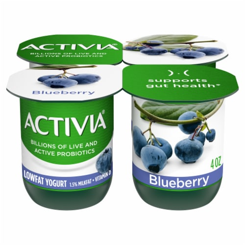 Dannon Activia Blueberry Yogurt Perspective: front