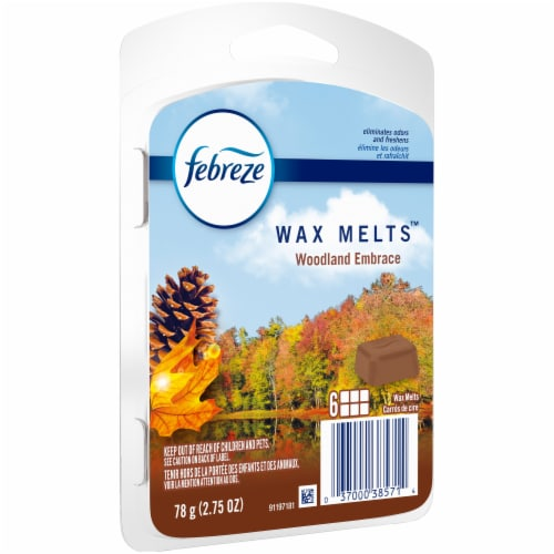 Febreze Woodland Embrace Wax Melts Air Freshener Perspective: front