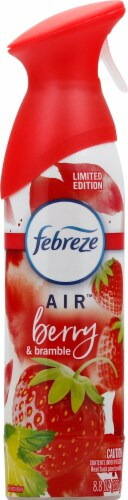 Febreze AIR Berry & Bramble Air Refresher Perspective: front