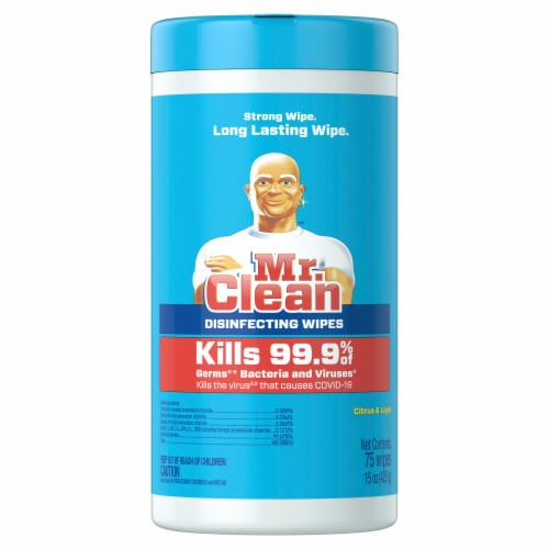 Mr. Clean Wipe & Go Disinfecting Wipes Perspective: front