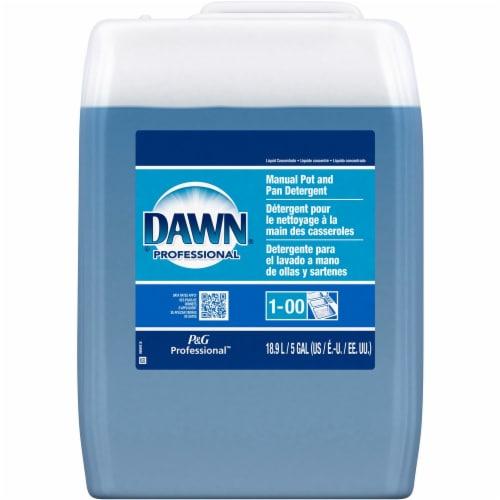 Dawn  Dishwashing Detergent 70681 Perspective: front