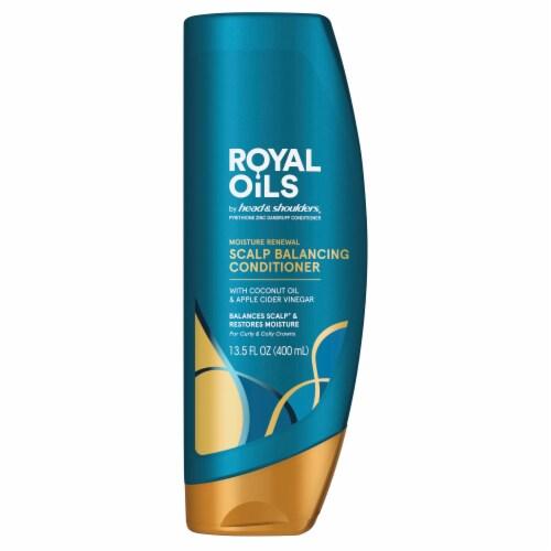 Head & Shoulder Royal Oils Moisture Renewal Conditioner Perspective: front