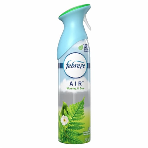Febreze AIR™ Meadows and Rain Air Refresher Perspective: front
