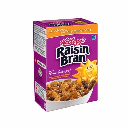 Kellogg`s Raisin Bran Cereal, 1.52 Ounce -- 70 per case Perspective: front