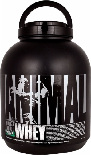 Animal  Whey Muscle Food   Chocolate Mint Perspective: front