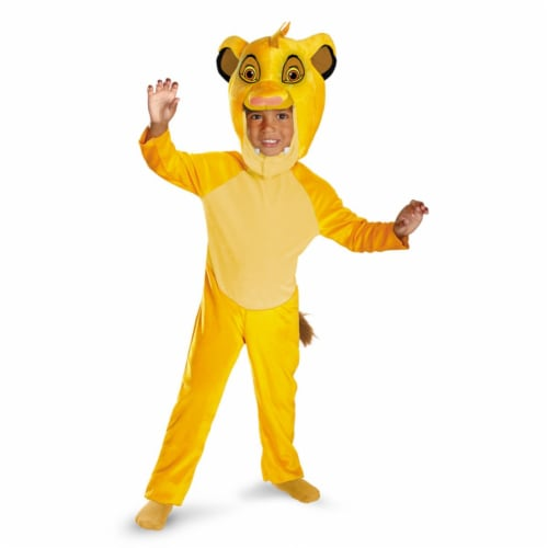 Costumes For All Occasions DG27135M Simba Classic 3T-4T Perspective: front