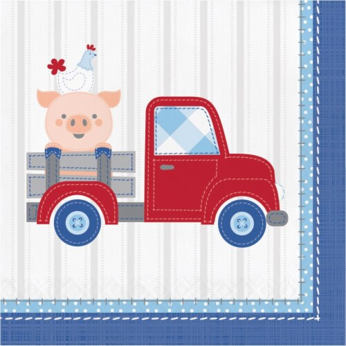 Creative Converting 339869 Farmhouse 1st Birthday Boy Napkins, 16 Count Perspective: front