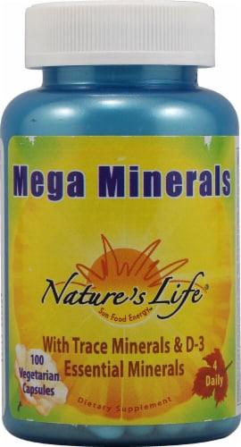 Nature's Life  Mega Minerals Perspective: front