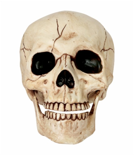Holiday Home Skull Decor Perspective: front