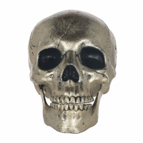 Holiday Home Skull Decoration - Silver Perspective: front