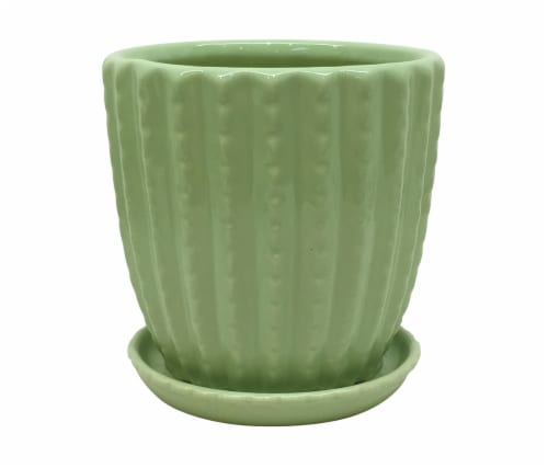 Everyday Living Cactus Pot - Aloe Green Perspective: front