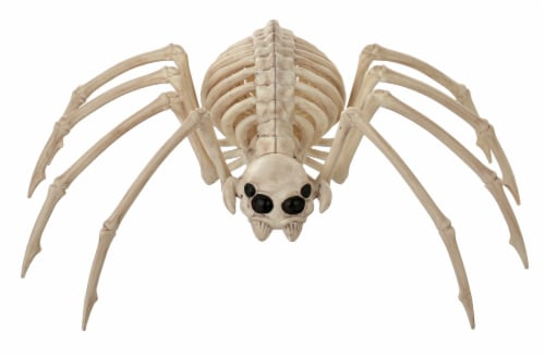 Holiday Home Spider Skeleton - Cream Perspective: front