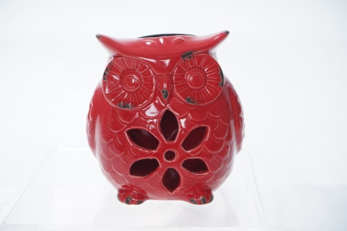 The Joy of Gardening Solar Ceramic Owl Perspective: front