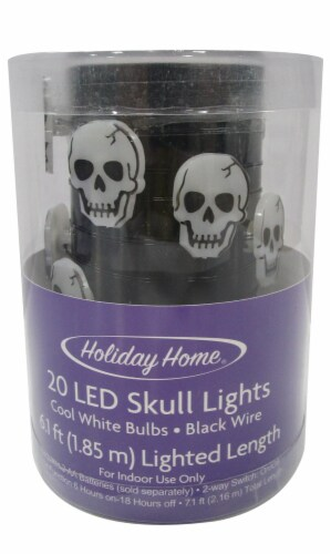Holiday Home® 20 LED Skull String Lights - White Perspective: front