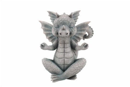 The Joy of Gardening Yoga Dragon - Gray Perspective: front