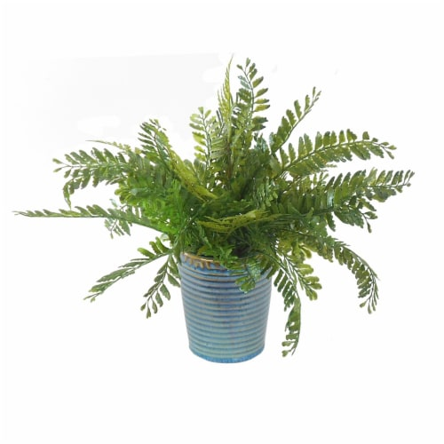 HD Designs® Mixed Faux Fern in Round Pot - Blue Perspective: front