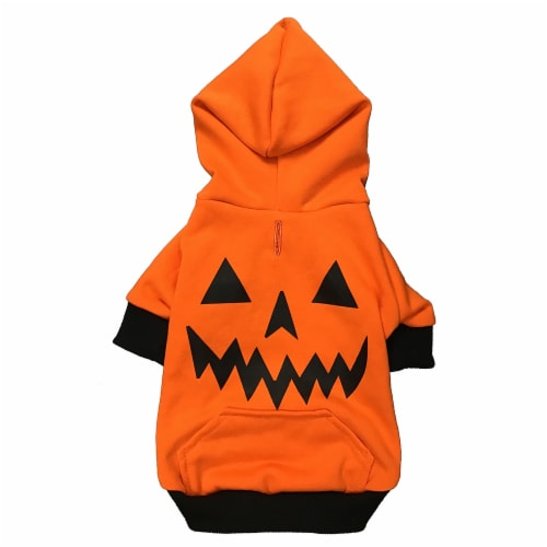 Holiday Home Pumpkin Small Pet Hoodie Perspective: front