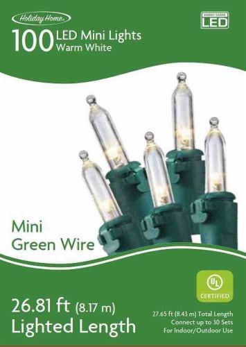 Holiday Home® 100 Green Wire LED Mini Lights - Warm White Perspective: front