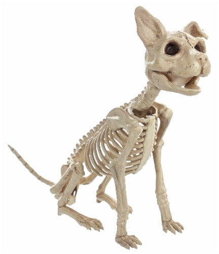 Holiday Home Skeleton Sitting Cat Decor Perspective: front