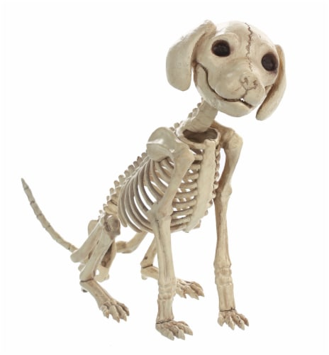 Holiday Home Skeleton Sitting Puppy Decor Perspective: front
