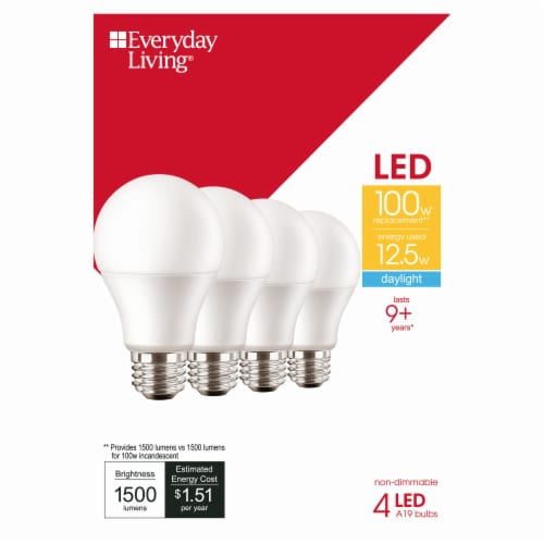 Everyday Living® 12.5 Watt (100 Watt) Daylight A19 LED Light Bulbs Perspective: front