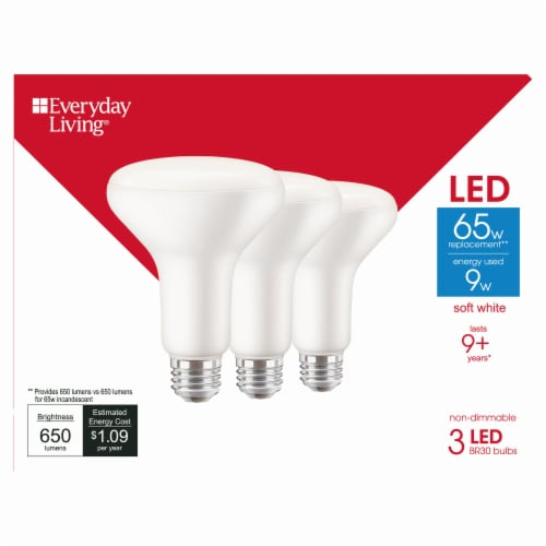 Everyday Living® 9-Watt (65-Watt) BR30 LED Floodlight Bulbs Perspective: front