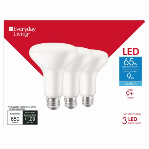 Everyday Living® 9-Watt (65-Watt) BR30 Indoor LED Floodlight Bulbs Perspective: front