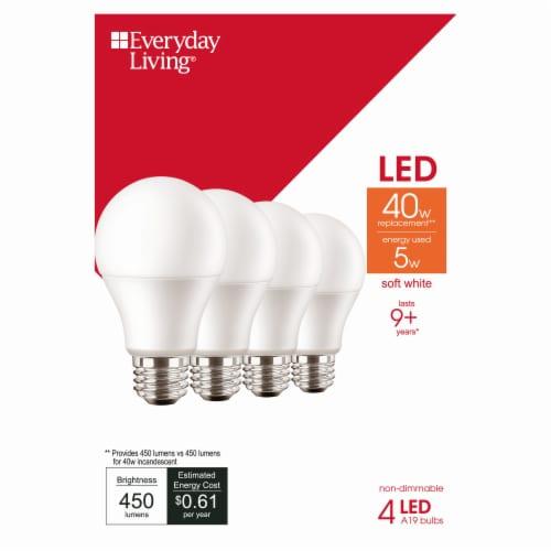 Everyday Living® 4-Watt (40-Watt) A19 LED Light Bulbs Perspective: front