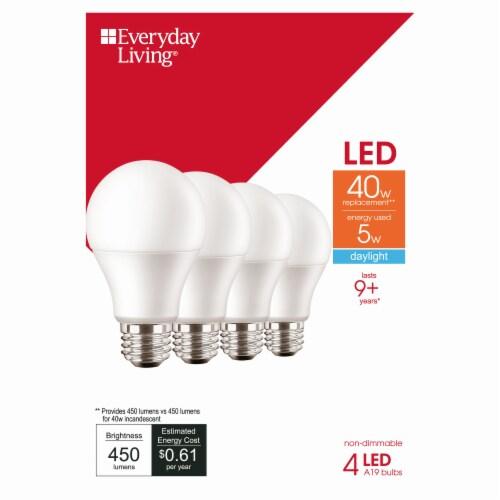 Everyday Living® 5-Watt (40-Watt) A19 LED Light Bulbs Perspective: front