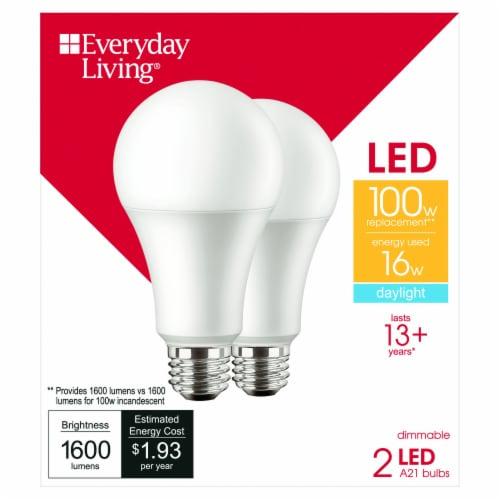 Everyday Living® 16 Watt (100 Watt) A21 Daylight LED Light Bulbs Perspective: front