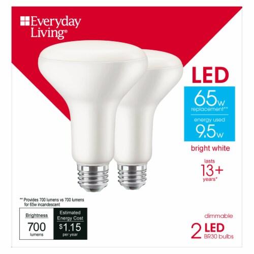 Everyday Living® 9.5-Watt (65-Watt) BR30 Indoor LED Floodlight Bulbs Perspective: front