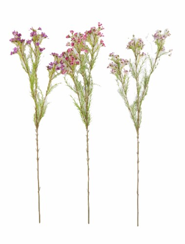 King Soopers Hd Designs Mini Blossom Stem Assorted 3 Ct
