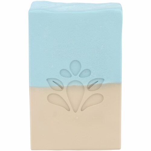 Simple Truth™ Sea Salt Pumice Bar Soap Perspective: front
