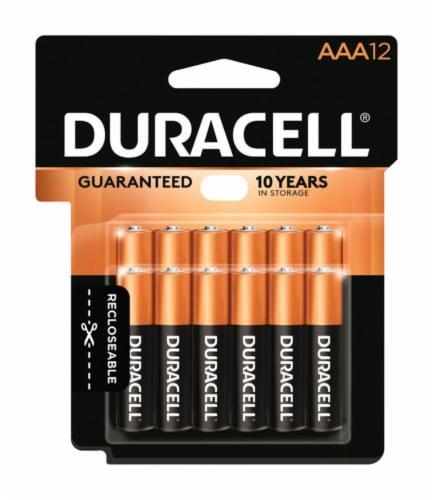 Duracell® CopperTop AAA Alkaline Batteries Perspective: front
